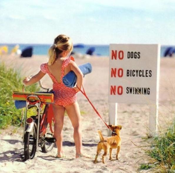 No-nothing